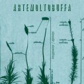 "Artemoltobuffa – ""Stanotte/Stamattina"" – Prod/Rec/Mix – Aiuola Dischi"